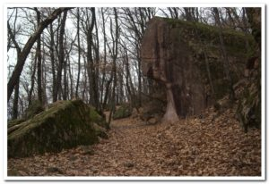 Weg Nr. 11 Aufstieg zur Burg