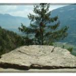 Steinplatte am Saxnerweg / Vellau